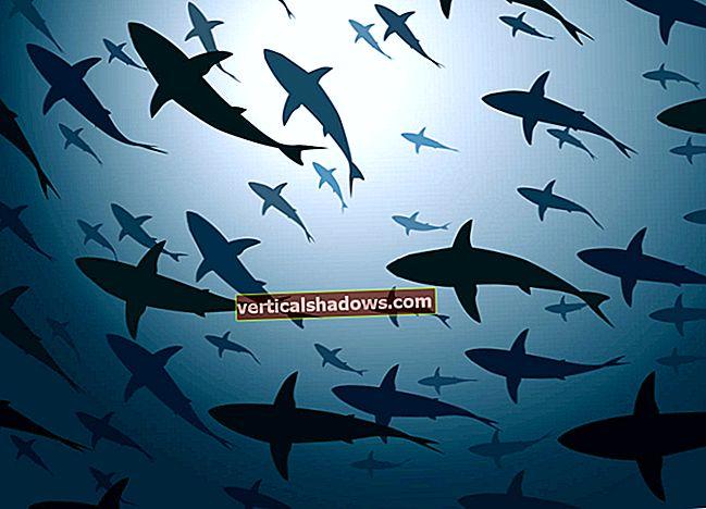 Jaws iekož no AWS Lambda lietotnes izvietošanas