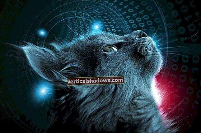 Hvad er Tomcat? Den originale Java-servletcontainer